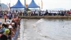 Wali Kota Sibolga Melepas Lomba Triatlon Di Pelabuhan Lama Sibolga